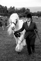 Glossop & District Show 19th June 2016