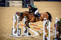Boleworth International Horse Show 2018-2