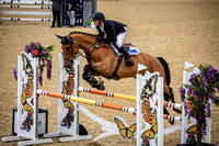 Boleworth International Horse Show 2018-10