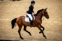 Boleworth International Horse Show 2018-17
