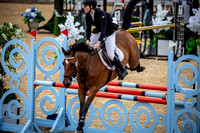 Boleworth International Horse Show 2018-19